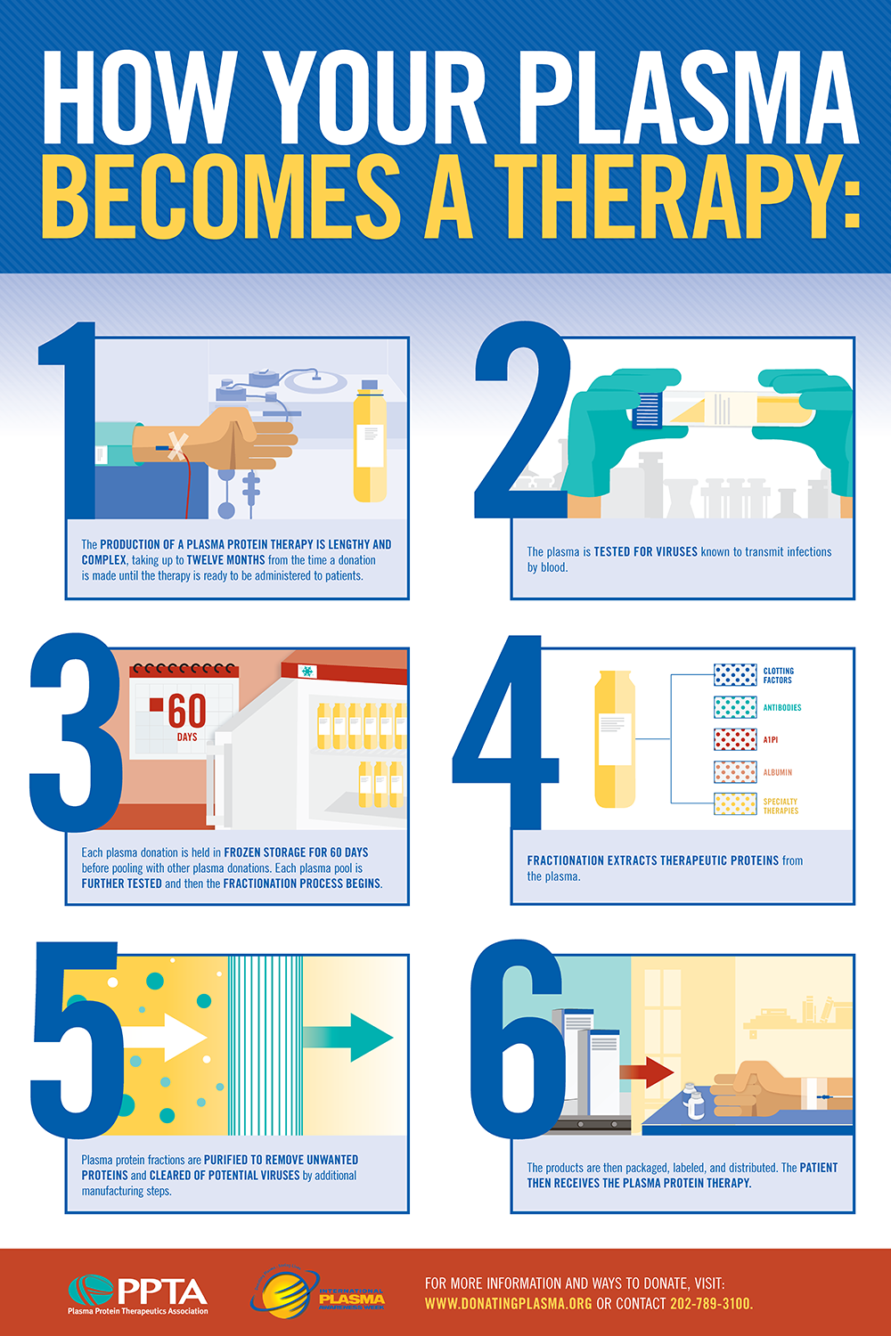 INFOGRAPHICS US 24x36 HOW YOUR PLASMA BECOMES A THERAPY